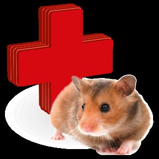 Obrazek dla kategorii vitamíny, léčiva a kosmetické přípravky