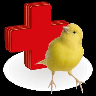 Obrazek dla kategorii vitamíny, léčiva pro ptáky
